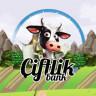 77 Bin Kişiyi Dolandıran Çiftlik Bank Oyunun Yazılımcısı Gözaltına Alındı