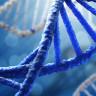 İnsan Hücrelerinin İçinde Yeni Bir DNA Yapısının Olduğu Keşfedildi!