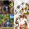 Nvidia'dan Eksik Fotoğrafları Bile Tanımlayıp Düzelten, Korkunç Yeteneklere Sahip Yapay Zeka