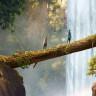 Gizemli Ve Eğlenceli Yeni Bir Oyun: Forest of Liars