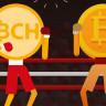 BCH'yi Bitcoin'miş Gibi Gösteren Bitcoin.com'dan Geri Adım!