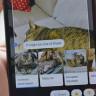 Google Lens, Telefonların Kamerasına Yerleştirilecek
