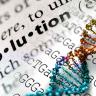 MEB'in Evrim Sorusuna Uzmanlardan Cevap: Dünya Düzdür Demekten Hiçbir Farkı Yok