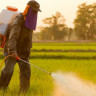 Tarım Alanlarında Zararlı Kimyasal Kullanımını Azaltan Akıllı Robot