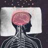 Uykunuzu Almadığınızda Beyniniz Kendini Yemeye Başlıyor!