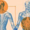 Vücudumuzun Akla Bile Gelmeyecek Bir Yerinde 'İkinci Beynimiz' Var!