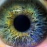 Göz Rahatsızlığı Olan Milyonlarca İnsana Derman Olacak Yapay İris, Resmi Olarak Kullanıma Sunuldu