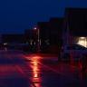 Yarasa Dostu Sokak Işıklandırmaları, İlk Kez Hollanda'da Kullanılmaya Başlandı