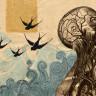 İlk Öğrenildiğinde Yanlışmış Gibi Gelse de Gerçekten Doğru Olan 11 İlginç Bilgi