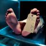 Öldürdüğü Kurbanı Geri Döndürebilen Kimyasal: Tetrodotoksin
