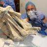 Peru'da Bulunan Üç Parmaklı Mumya, Yeni Bir İnsan Türüne Ait Olabilir!