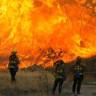 Küresel Isınma Sonucu Yaşanan Aşırı Sıcaklar,  Orman Yangınlarına Neden Oluyor