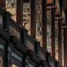 Araştırmacılar, 400 Senelik Kitapların Yer Aldığı Bir Kütüphanede Arsenik Zehrine Rastladı