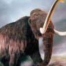 Kırım'da 10.000 Yıl Önce Yaşamış Mamut Kalıntıları Bulundu