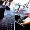 Hızlı Reflekslere Sahip Baba, 2 Çocuğunu Aynı Anda Arabanın Altında Kalmaktan Kurtardı