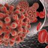 Bilim İnsanları Hepatit B Virüsünün Kökenini Buldu