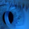 Bilgisayarlar ve Telefon Ekranlarında Bulunan Mavi Işık, İleri Yaşta Körlüğe Neden Olabilir