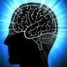 Araştırmacılar, İnsan Beyninin Çalışma Sistemini İncelemek İçin Bir Yöntem Geliştirdi
