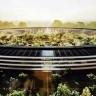 Apple, 850 Milyon Dolarlık Güneş Enerjisi Santrali Kuruyor