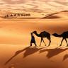 Sahra Çölü'nün Genişlemesi Güneş Panelleri İle Durdurulabilir