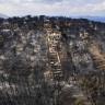 Tüm Dünyada Orman Kayıplarının Nedenlerini Ortaya Çıkaran Harita