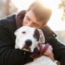 Köpeklerin Sahiplerine 11 Farklı Biçimde 'İyi ki Varsın' Deme Yolları