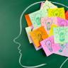 Hafıza ile İlgili Doğru Olduğu Düşünülen Üç Yanlış Bilgi