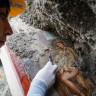 Pompeii'de Antik Erotik Yatak Odası Çizimi Ortaya Çıktı