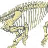 Dinozorlara Rakip Çıktı: 10 Tonluk Devasa Bir Kara Canlısının 200 Milyon Yıllık Fosilleri Bulundu