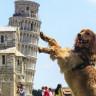 Pisa Kulesi'ni Ayakta Tuttuğunuz Fotoğraflar İçin Son Şans Olabilir: Kulenin Eğimi Azalıyor