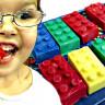 Bilim İnsanları, Dışkılama Süresini Tespit Etmek İçin LEGO Yedi