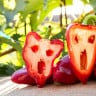 ABD'de GDO'lu Gıdalara Farklı Etiket Uygulaması Resmiyet Kazandı