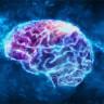 2018'de İnsan Beynine Dair Öğrendiğimiz 10 Yeni Bilgi