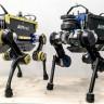 Yıkılmadım Ayaktayım: İsviçre'de Düştüğünde Tekrar Ayağa Kalkabilen Robot Geliştirildi