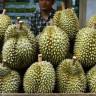Endonezya'da Satılan Bu Meyvenin Tanesi Tam 5280 TL