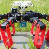 GPS'e İhtiyaç Duymadan Yürüyebilen İlk Robot (Video)
