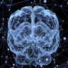 Bilim İnsanları, Beyinde Gizemli Bir İletişim Mekanizması Keşfetti