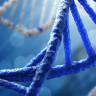 Bilim İnsanları, DNA'ya 4 Yeni Sentetik Baz Ekleyerek 8 Bazlı Yapay DNA Üretmeyi Başardı