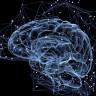 Sinirbilimciler Kararlarımızı Bizden 11 Saniye Önce Tahmin Edebiliyor