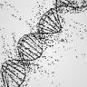 Bizleri Geçmişe Götürebilecek Zaman Makinemiz: Antik DNA