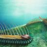 Çin'de Tarihi Keşif: Yarım Milyar Yıl Öncesine Ait Binlerce Fosil Bulundu
