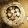 Çin'de Bir Mezarda 2500 Yıllık Kırılmamış Yumurtalar Bulundu