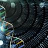 Laboratuvar Ortamında DNA Tabanlı Bir Bilgisayar Üretildi