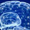 İnsan Beyni Bir Hafıza Kartı Olsa Boyutu Ne Kadar Olurdu?