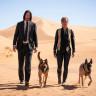 John Wick: Chapter 3 - Parabellum'da Köpekler de Savaşa Katılıyor