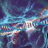 CRISPR ile İnsan Hücrelerine Çift Çekirdekli Bilgisayar Yerleştirildi