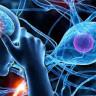Bilim İnsanları, Yaşlı İnsanların Beyinlerini Uyararak Hafızalarını Yenilemeyi Başardı
