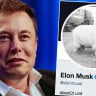 Elon Musk, Twitter'daki Profil Fotoğrafını Koyun Olarak Değiştirdi: İşte Sebebi
