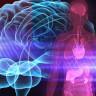 Bilim İnsanları, Beyin ve Vücut İlişkisine Işık Tutacak Yeni Bulgular Keşfetti