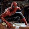 Yalnızca 7 Saniye Örümcek Adam İzleyerek Örümcek Fobisini Azaltmak Mümkün